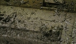 Vallejo Russian Mud