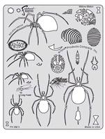 Artool Spider Master-Widow maker by Craig Fraser